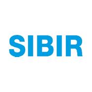 SIBIRGroup AG