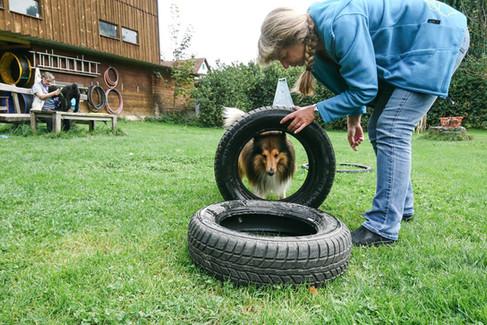 Hundeschule-Wolfspfote-55.jpg