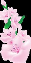 kisspng-painting-pink-flowers-floral-des