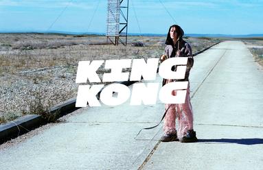 kingkongwebsite.png