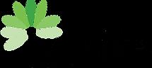 insife logo.png