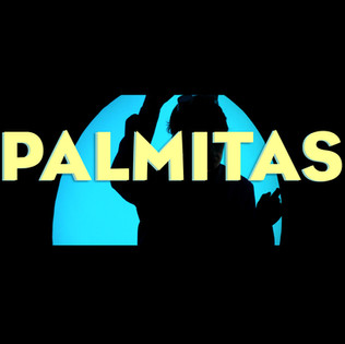 Palmitas Musicvideo Productions