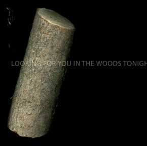 Looking for you in the woods tonight