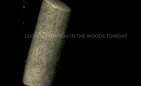 Looking for you in the woods tonight1.jp