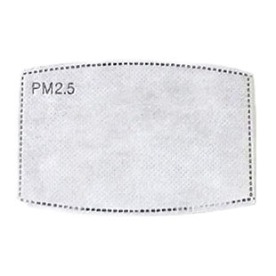 PM 2.5 Activated Carbon Filter Insert