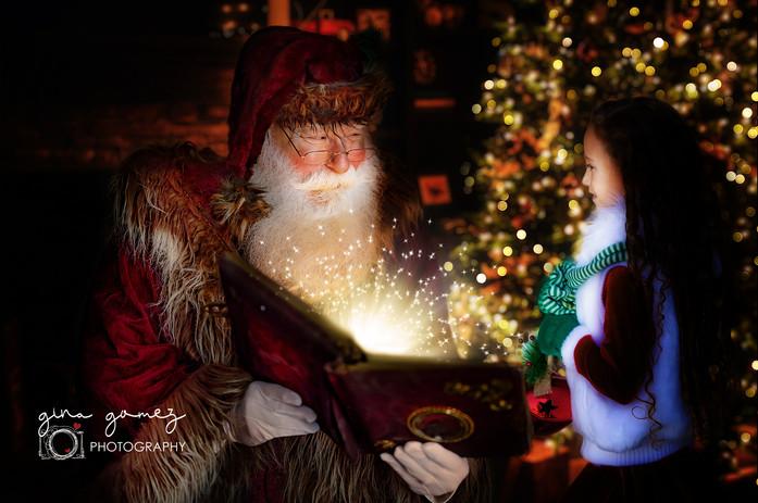 Christmas Santa Reading