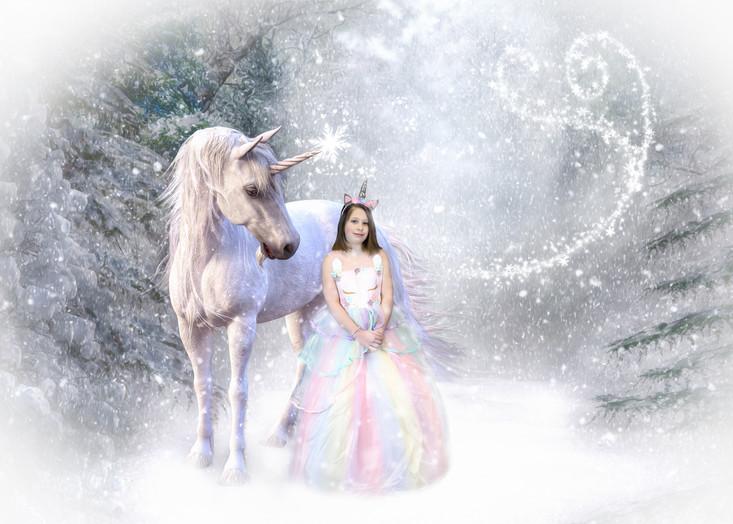 unicorn 2.jpg