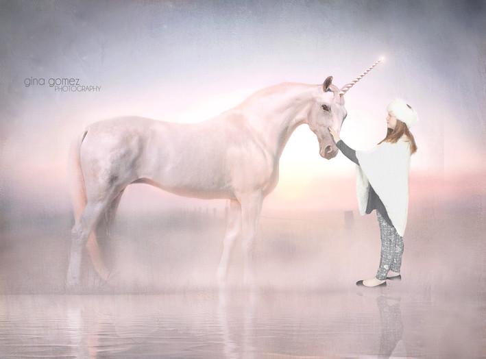 UnicornbyLake fb.jpg