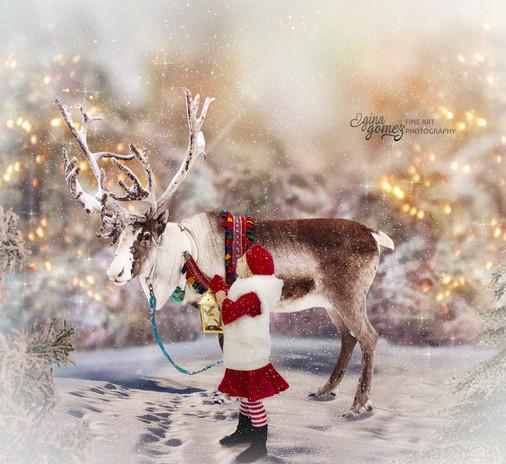 Christmas Reindeer Elegant