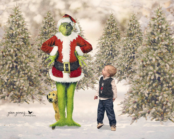 Christmas The Grinch