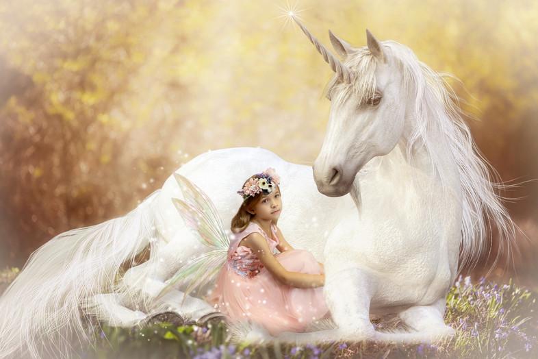 Unicorn Fairy.jpg