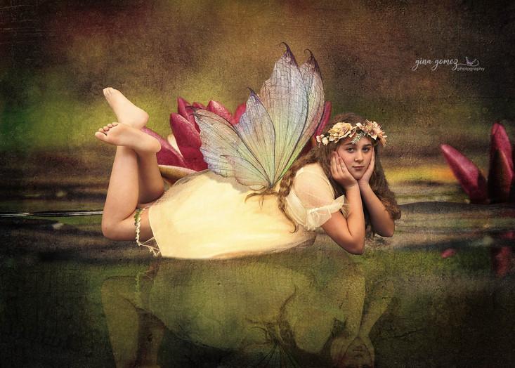 water-lily-1442497 fb.jpg