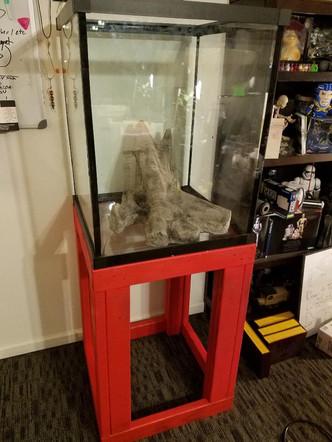 75 Gallon Quarantine Vivarium by Custom Aquariums!