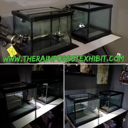 TWIN 30 Gallon Quarantine Tanks from Custom Aquariums