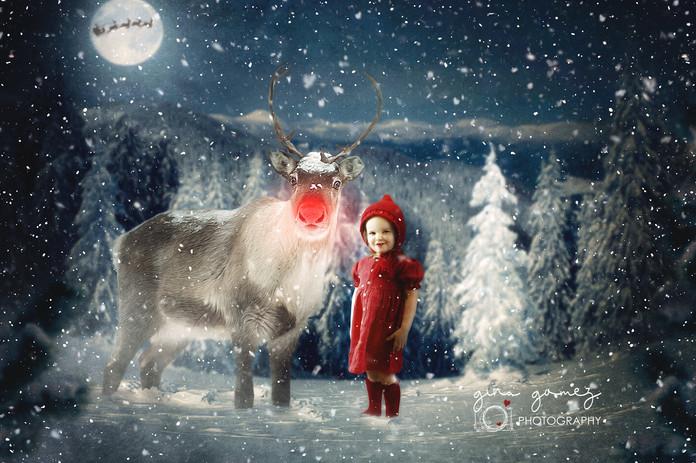 Christmas Rudolf Nose