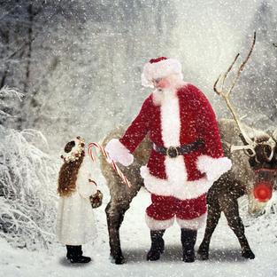 Christmas Option 29
