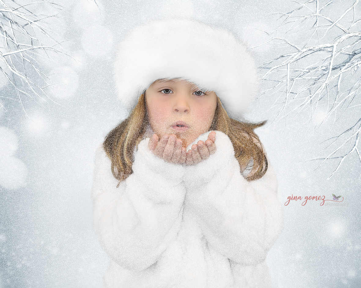 WinterPortraitSceneBlue fb.jpg