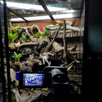 TRE Flora 5 camera.jpg