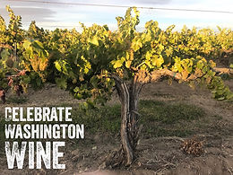 Washington Wine Month - Wine Features and Special Pricing!