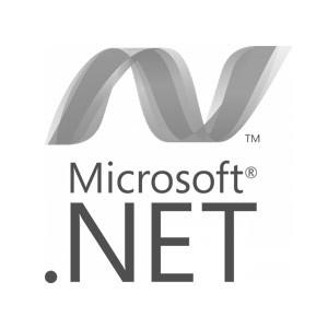 Microsoft.net.jpg