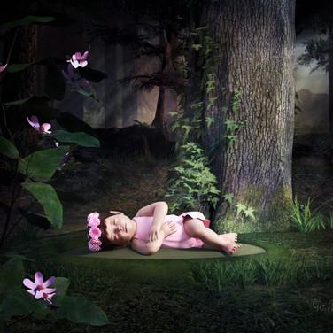 Baby Fairy - A Precious Surprise
