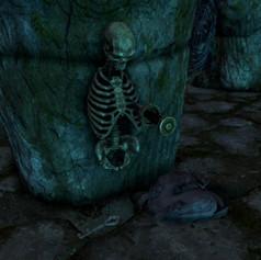 Lokir's Tomb -  Skeleton