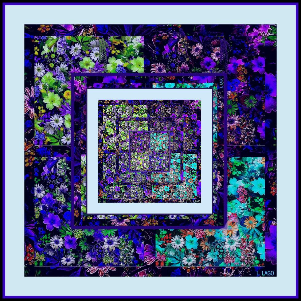 Collage184.jpg