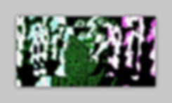 Collage95.jpg