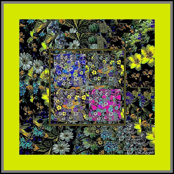 Collage112.jpg