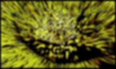 1-Desktop275.jpg