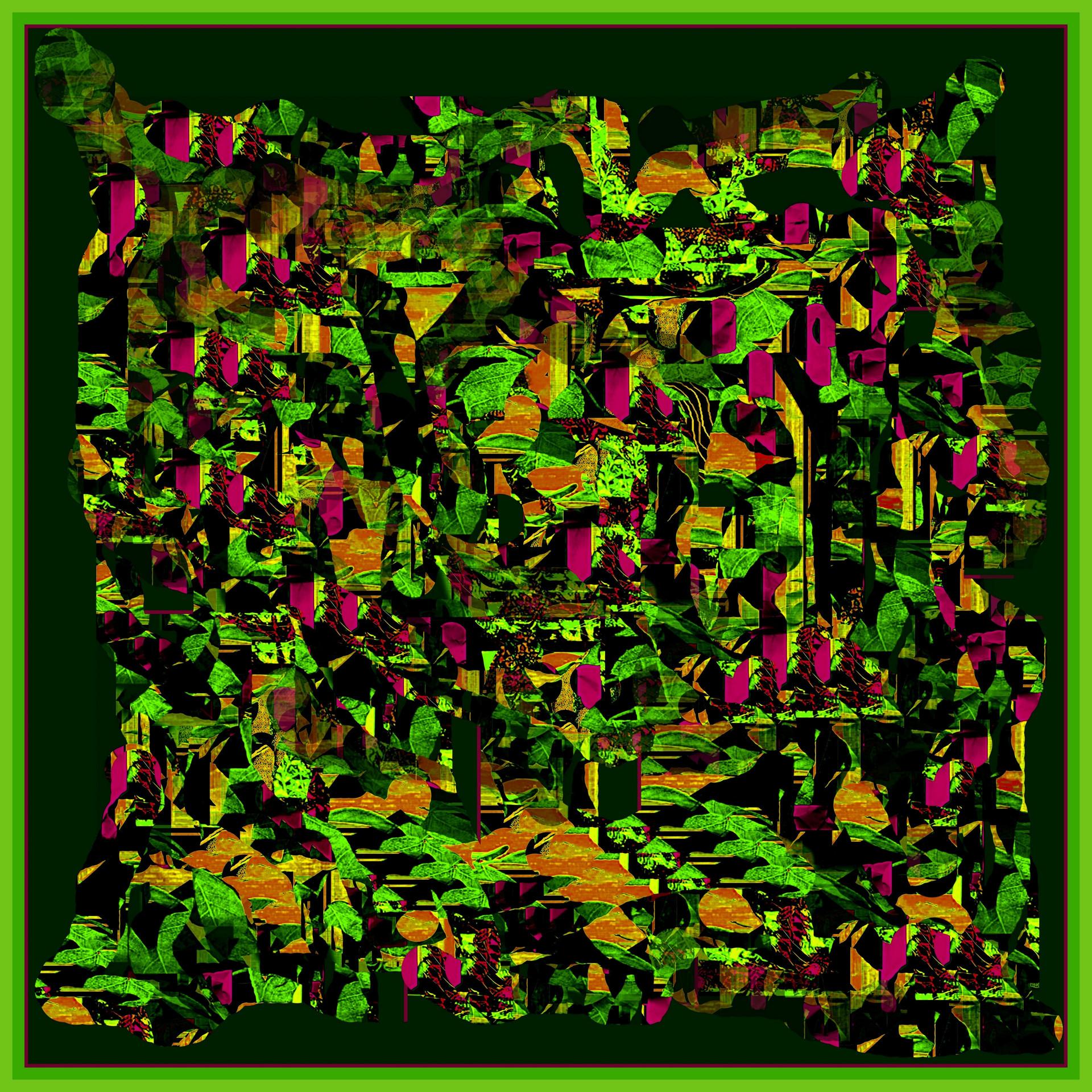 1-Collage565.jpg