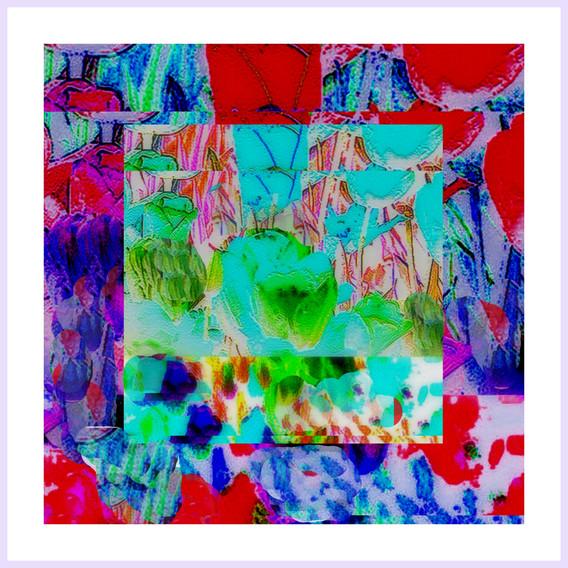 1-Desktop772.jpg