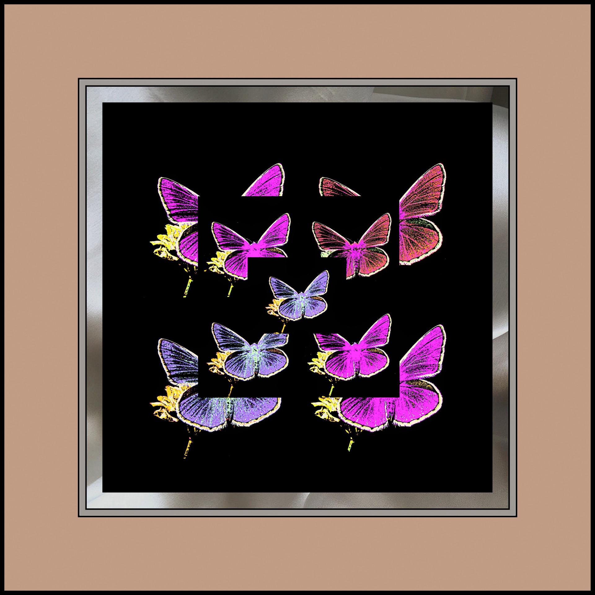 1-Desktop665.jpg