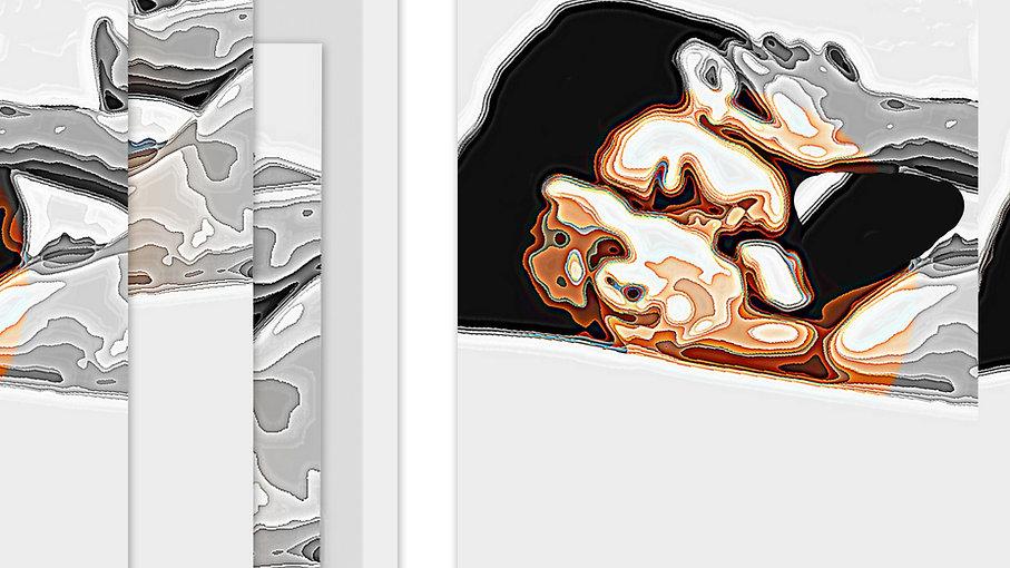 1-Collage395_InPixio_InPixio.jpg