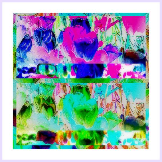 1-Desktop774.jpg