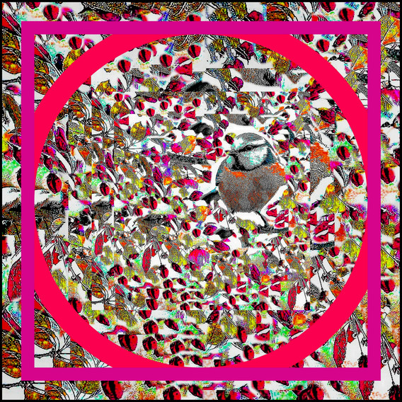 1-Collage589.jpg