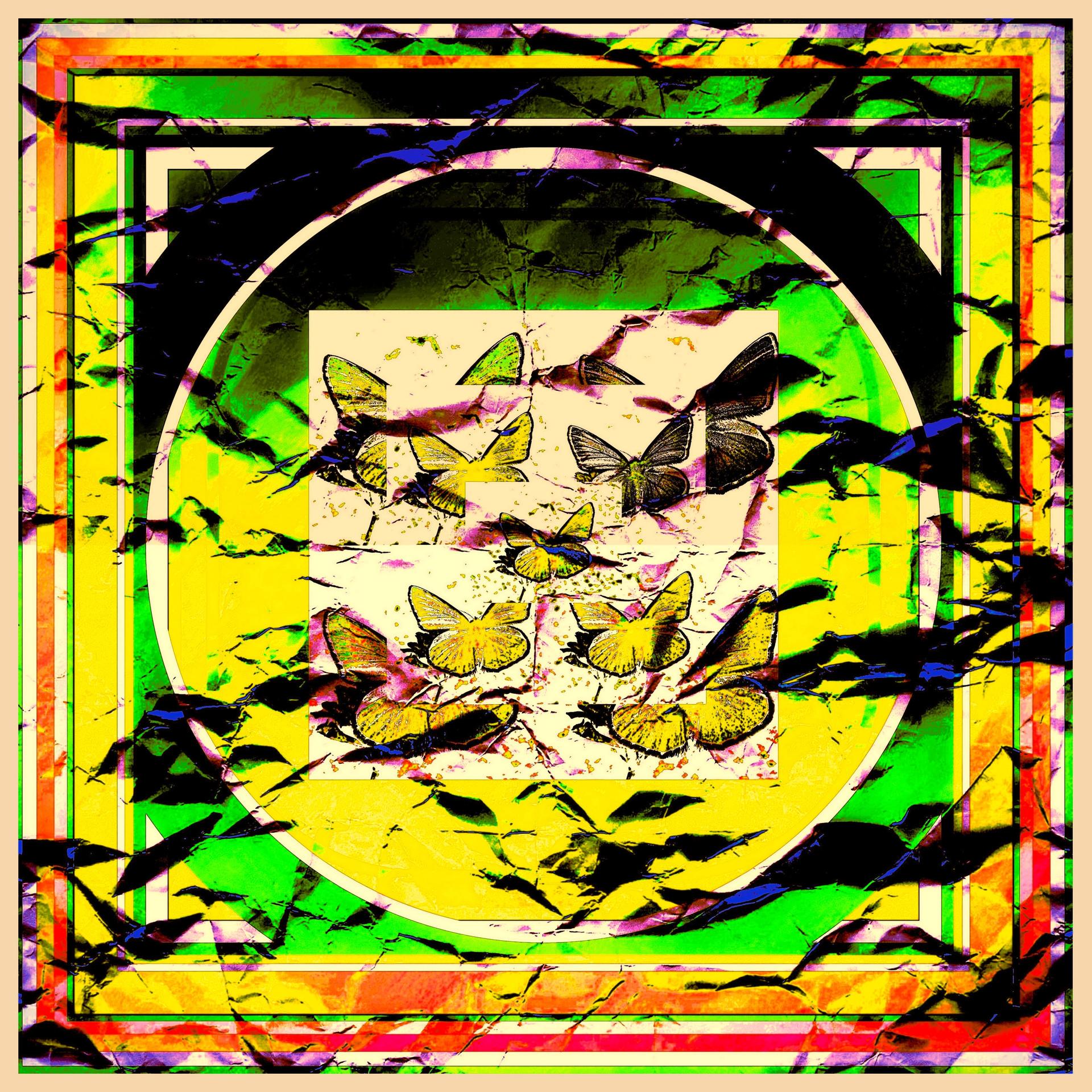 1-giallo 2.jpg