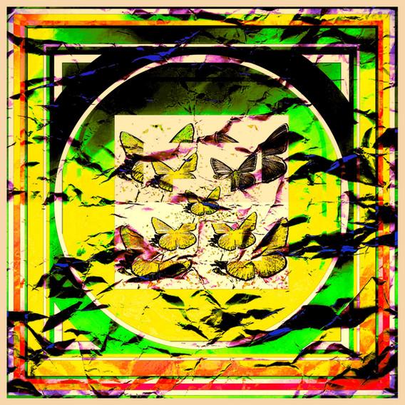 1-yellow 2.jpg