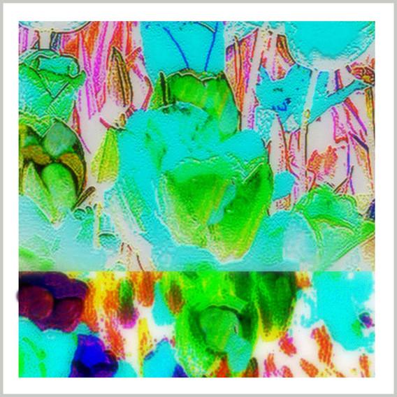 7_InPixio.jpg