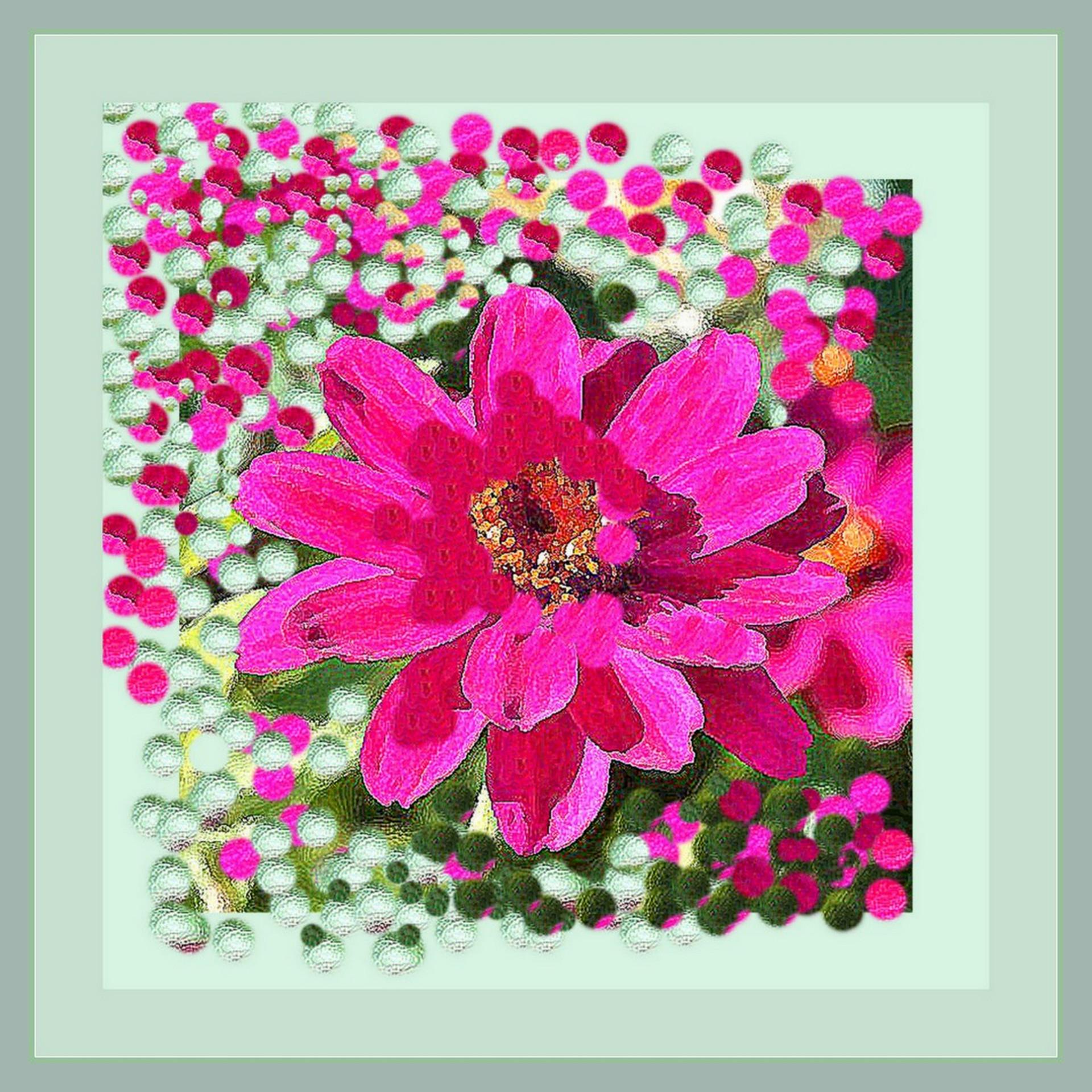 collezione fiori 5.jpg