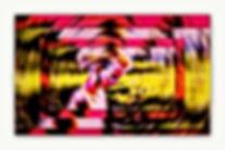 Collage105.jpg