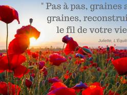 Graine après graines, pas après pas, reconstruisez le fil de votre vie !