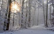 snow-4668099.jpg