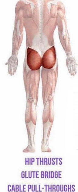 ISOLATE GLUTE WORKOUT