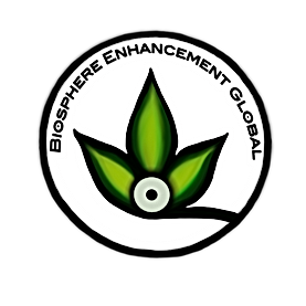 BE Global Logo.png