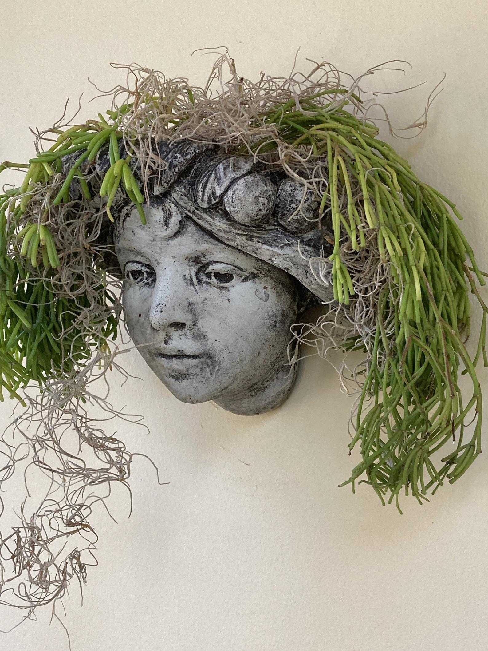 Head Wall Planter