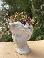 Handmade Concrete Head Planter with Succ