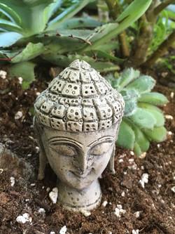 Concrete Buddha Head Statue