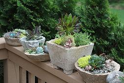 Hypertufa Pots & Gardens