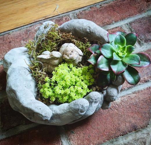 Concrete Hands Tabletop Garden
